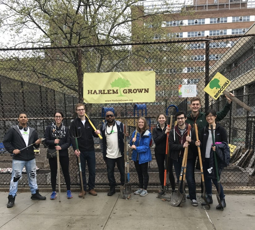 New York Team Event: Harlem Grow