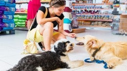 Pet-Centric Big Box Retailer Rolling Out New Convenience Store Format