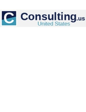 consulting.us logo